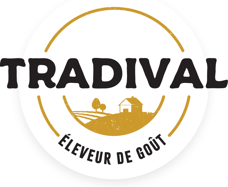 tradival_quadri.png